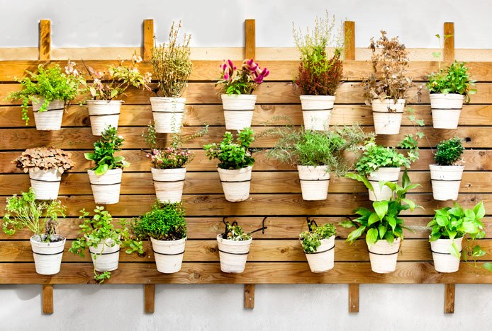 Lagom Inspired Kitchen Wall Garden