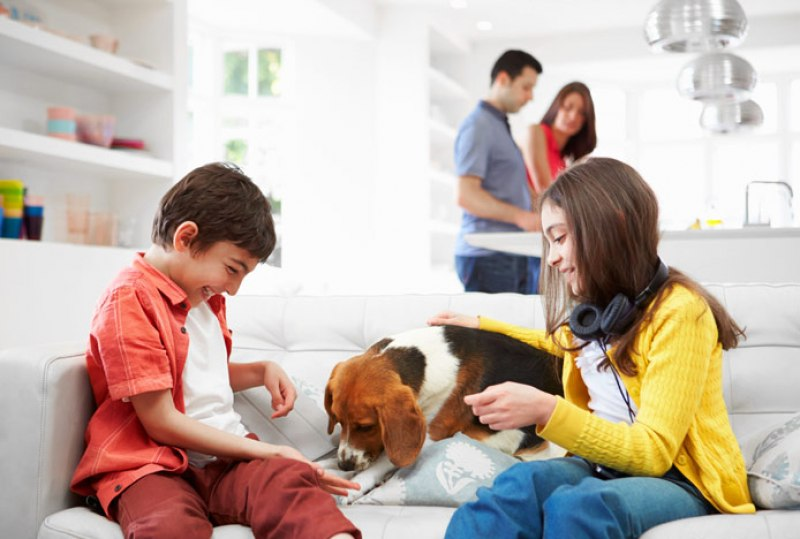 Designing a Home for the Whole Family