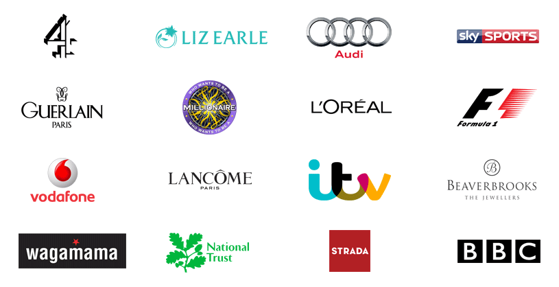 Example Customer Logos